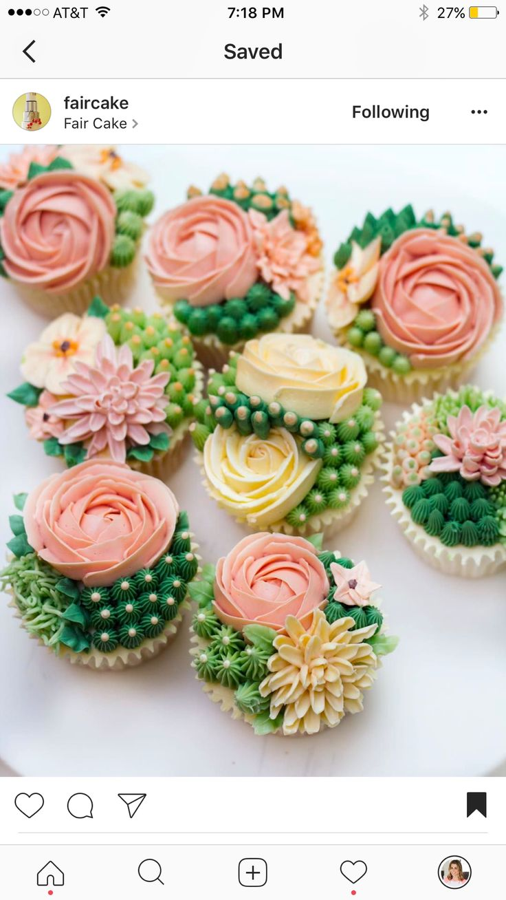CUPCAKES~ROSES AND CACTUS CUPCAKES