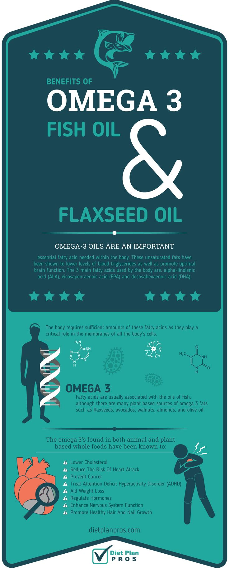 Benefits of Omega 3 Oils: Omega-3 oils are an important, essential fatty acid needed within the body. These unsaturated fats have been shown to lower levels of blood triglycerides as well as promote optimal brain function. The 3 main fatty acids used by the body are: alpha-linolenic acid (ALA), eicosapentaenoic acid (EPA) and docosahexaenoic acid (DHA). The body requires sufficient amounts of these fats as they play a critical role in the membranes of all the body's cells