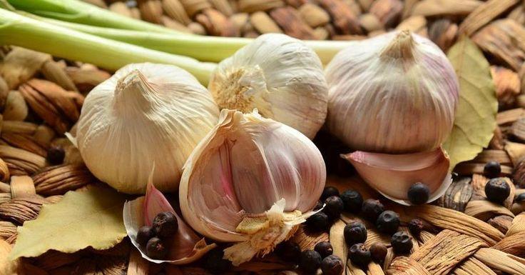 ¿Quieres cultivar ricos y tiernos ajos en casa? Siembra, plantación y cosecha