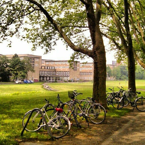 New Cologne University Universit t zu K ln in K ln Nordrhein Westfalen
