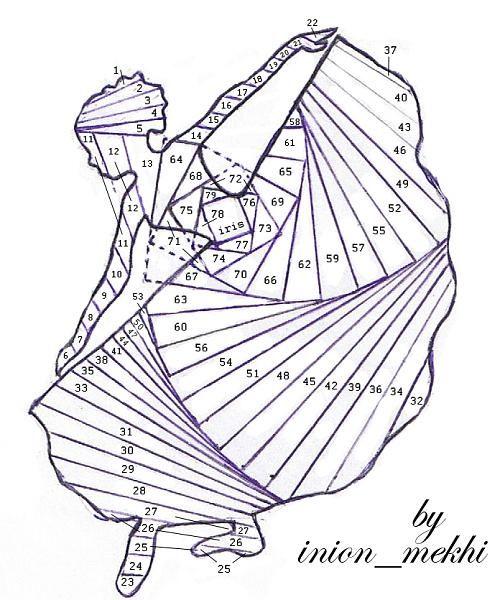 Iris Paper Folding Designs