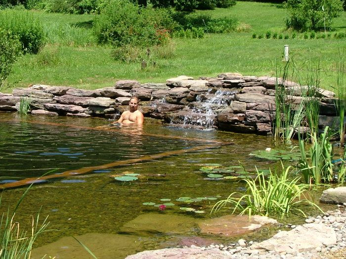 42 best images about natural swimming pools ponds on pinterest swimming pool construction Natural swimming pool builders