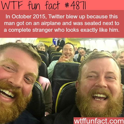 Bearded gingers that look exactly the same -   WTF fun facts