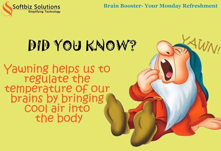 Here Comes Your Monday Brain Booster