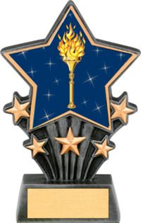 Victory Resin Super Star Trophy | Dinn Trophy New! Featuring 40 letters/numbers of free trophy personalization, this trophy is an unbeatable value (.10 per additional letter/number).