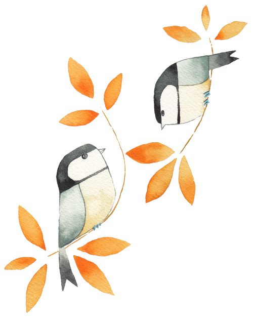 Bird paintings by Matt Sewell from the super cute Our Garden Birds