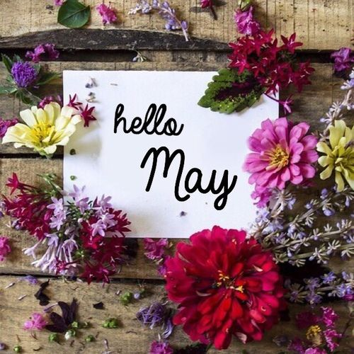 "Hello May!      (""Hello May month may quotes hello may welcome may may images may image quotes."")"