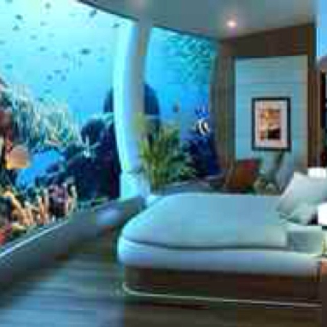 Coolest Bedrooms Ever