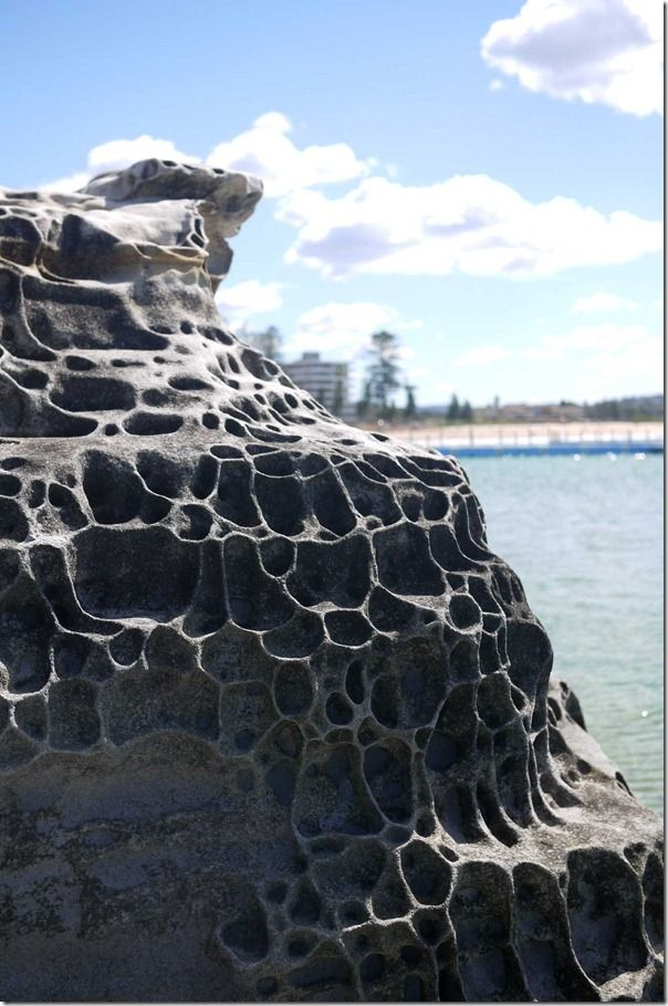 Rock formation at Dee Why beach, Sydney