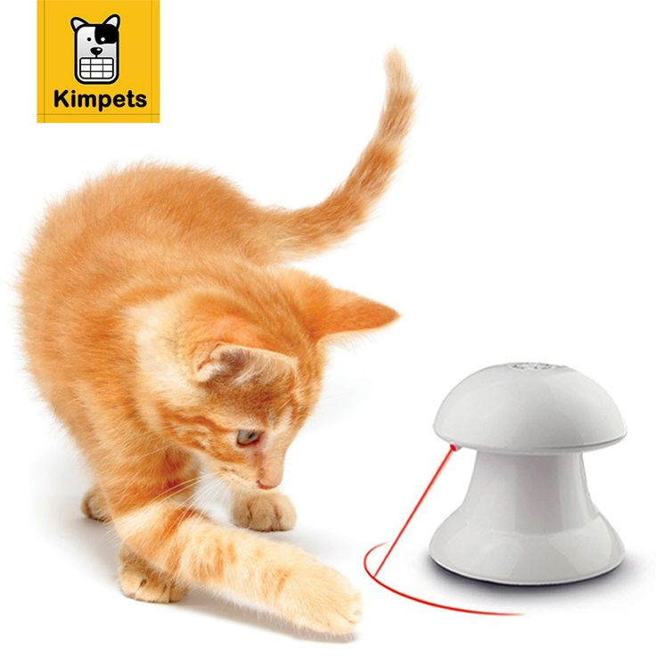 KIMHOME PET Interactive Laser Pet Toy Creative and Funny Dog Cat Toys LED Laser Pointer light Three Speed Settings Free Shipping // FREE Shipping //     Get it here ---> https://thepetscastle.com/kimhome-pet-interactive-laser-pet-toy-creative-and-funny-dog-cat-toys-led-laser-pointer-light-three-speed-settings-free-shipping/    #catoftheday #kittens #ilovemycat #lovedogs #pup
