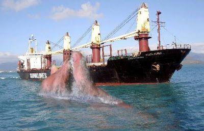 ship bermuda