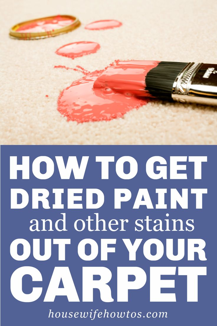These steps to get dried paint out of your carpet will