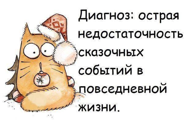 Вот..такая она у нас суровая жить в Петербурге... что зима, что лето... Так…