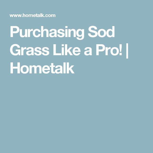 Purchasing Sod Grass Like a Pro! | Hometalk