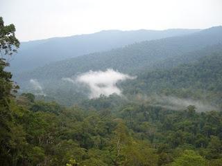 Batang Gadis National Park, North Sumatra