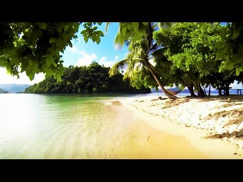 "Relaxation -Mind & Body Tropical Island - Drone flight over -  - ""Reale..."