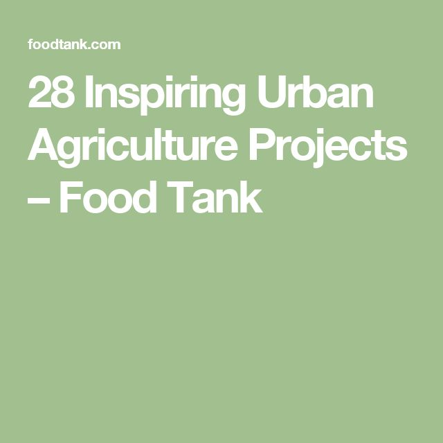 28 Inspiring Urban Agriculture Projects – Food Tank