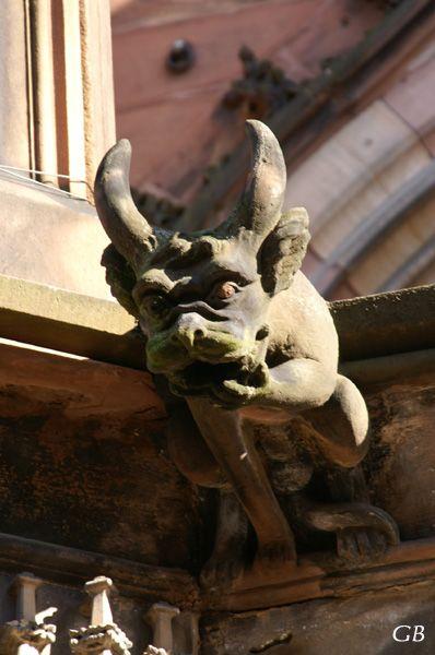 les gargouilles de la cathédrale de Strasbourg