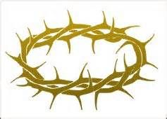 50 best thorns images on pinterest crown of thorns euphorbia rh pinterest com jesus crown of thorns clipart Crown of Thorns Vector