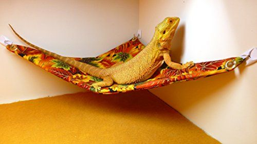 """Hammock for Bearded Dragons, Autumn Leaves fabric with suction cup hooks These hammocks by Carolina Designer Dragons provide a comfortable, elevated vantage spot that bearded dragons are known to enjoy in their houses. Hammock size measures 16"""" x 16"""" x 22"""". They come with three suction cup hooks which are very sturdy and rated for 3 pounds. Hammocks are """"hand-sewn in the U.S.A."""" and machine-washable. The sewn-in internal batting gives a comfortable feel for your bearded drago"""