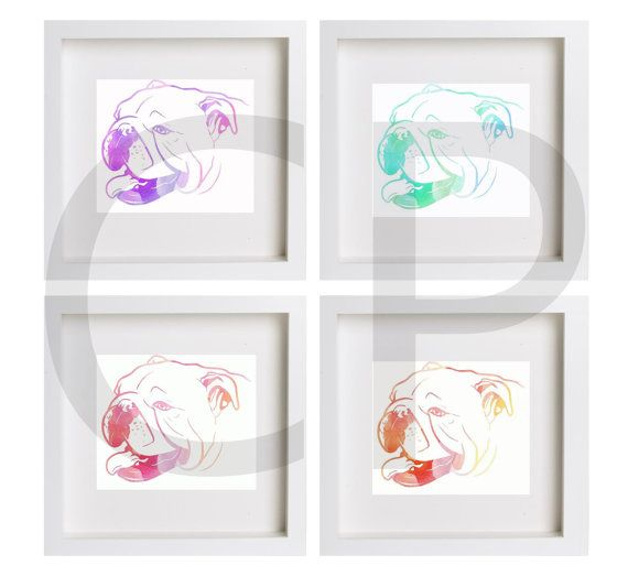 Bulldog Ingles / 4 imágenes al precio de 3  por ChloePinetdrawings Digital Illustration / Available in www.etsy.com/shop/chloepinetdrawings