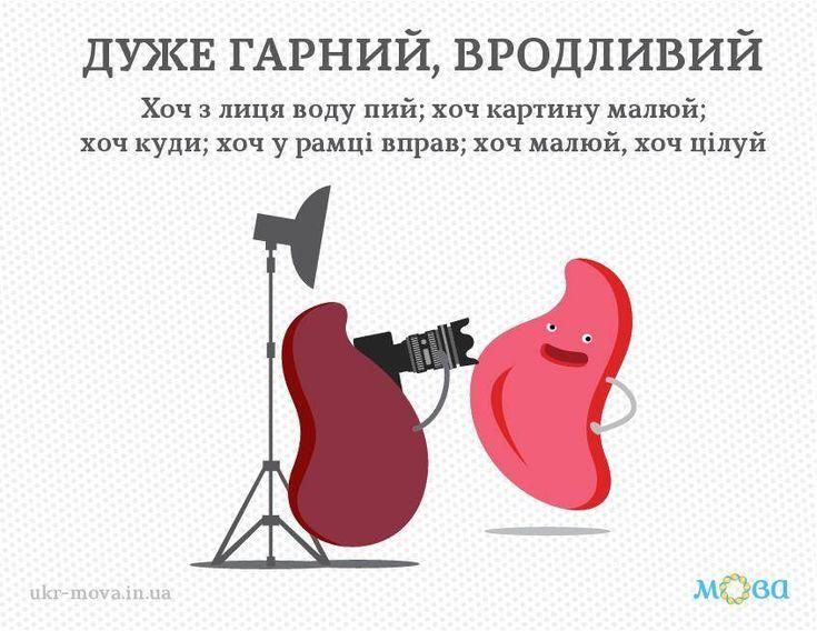 следите скласти речення з антонімами красивий уродливий Олег Демьяненко назначен