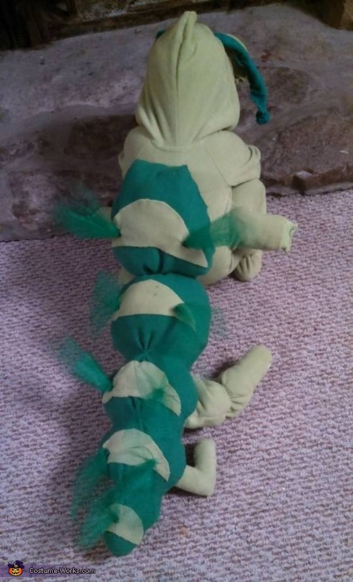 Rocky: This is my 2 year old grandson Declan and he is a caterpillar. My daughter Ashley has three children and we kind of wanted to go with a garden creature...