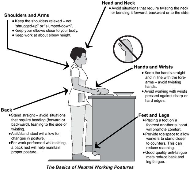 Kitchen Ergonomics Dimensions