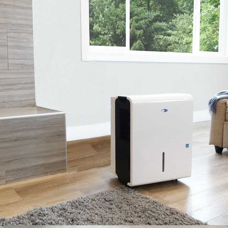 19 Best Best Dehumidifiers Images On Pinterest  Basement Stair Cool Best Dehumidifier For Bathroom Review
