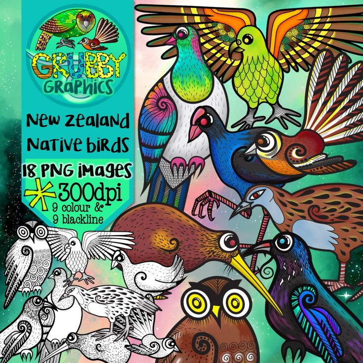 There's a lot more to Aotearoa's bird life than the world famous kiwi! Are you looking for some quirky New Zealand native birds to flitter into your latest creative project? Then check out these beauties!  This set contains 9 birds (in both colour and blackline) as high quality (300 dpi) PNGs with transparent backgrounds.  •	Kereru (wood pigeon) •	Kiwi •	Pukeko •	Tui •	Piwakawaka (fantail) •	Ruru (morepork) •	Kea •	Weka •	Kakapo