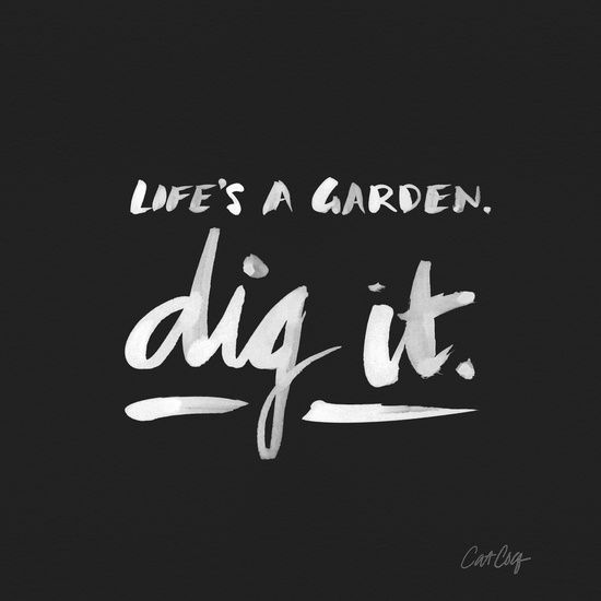 Life's a garden, dig it https://society6.com/product/dig-it--white-on-black_print?curator=themotivatedtype