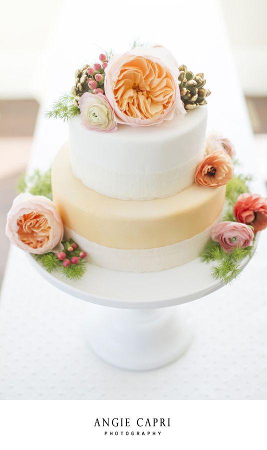 How To Make A Fake Cake Starting Fakery
