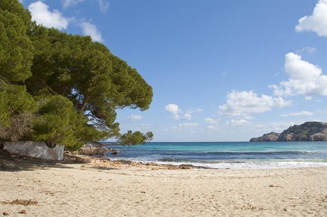 Cala Agulla - Majorque (Espagne)