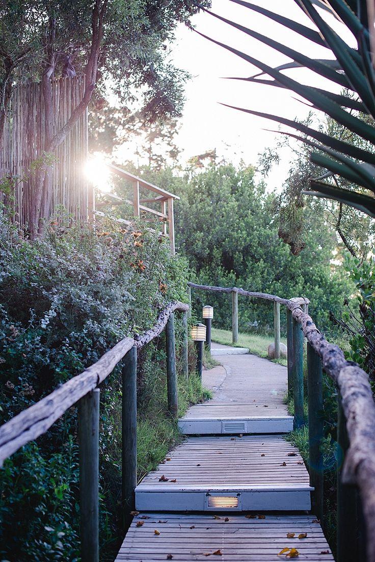 Emily Moon River Lodge   Paradise in Plettenberg Bay   Garden Route