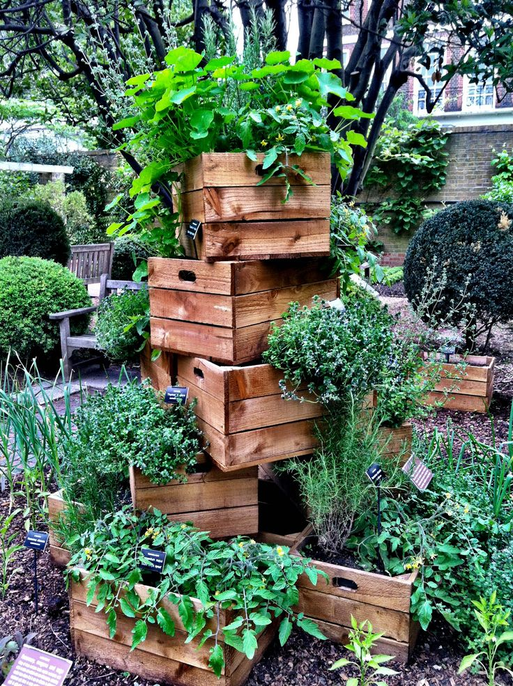 Great idea for a garden. Using some old crates to hold plants :)