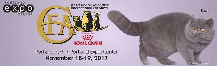 More than 40 breeds of cats vie for prizes and honors culminating with Best in Show at the Portland Expo Center.