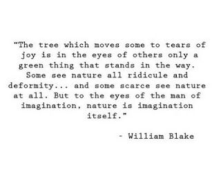 imagination poem