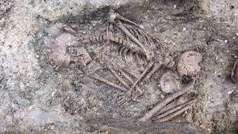 Bronze Age child's skeleton discovered at Pewsey Vale dig