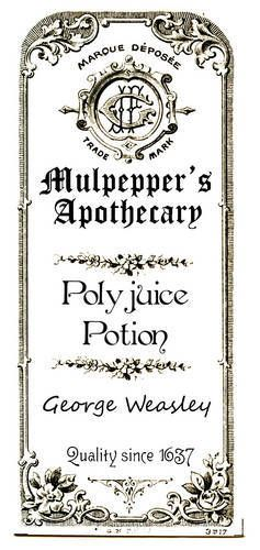 Harry Potter Ornaments - Floo Powder & Polyjuice Potion (with printable label!) - OCCASIONS AND HOLIDAYS