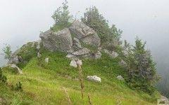 Treasures in mist, National Park Nízke Tatry (Low Tatras), Slovakia