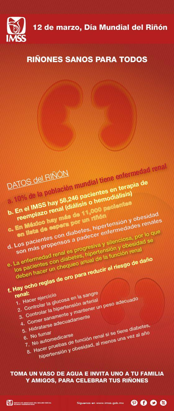 Día mundial del riñón.