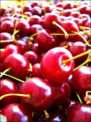 Montmorency cherry tree (sour like the ones I grew up eating - red balls!)