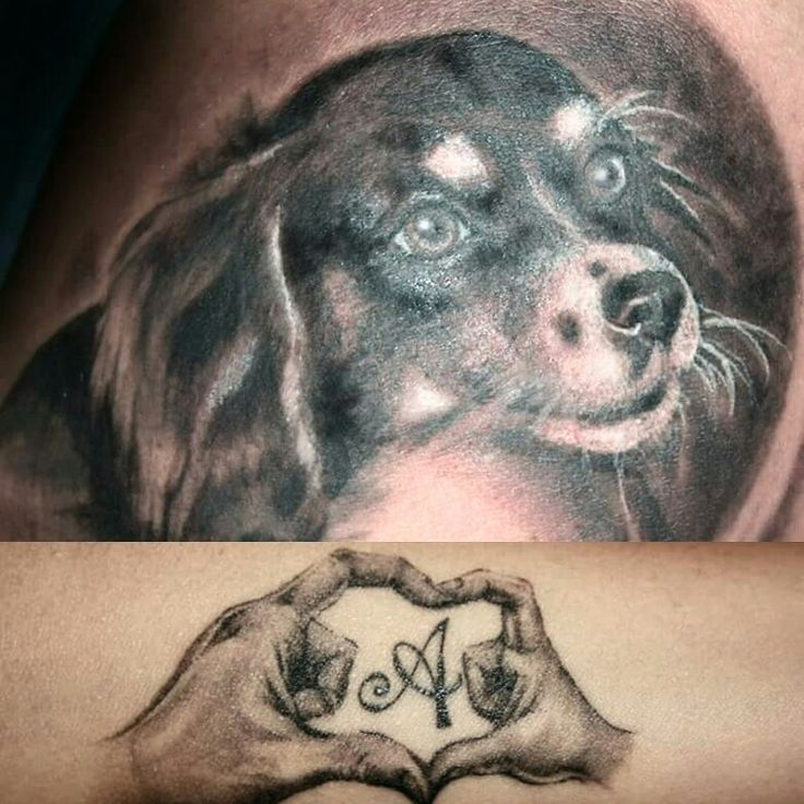 Cagnolino tattoo