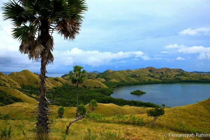 Bukit cinta ( love hills ) @ manggarai barat .NTT