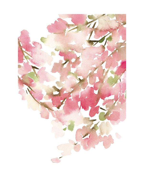 Cherry Blossom in Spring by Yao Cheng for Minted