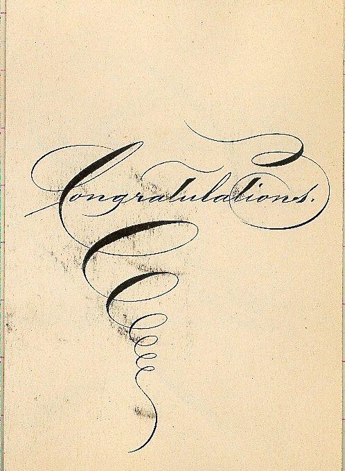francis b. courtney scrapbook