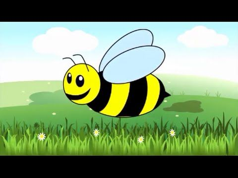 La comunidad de los insectos - Aprendamos sobre insectos (Video para niños) - YouTube