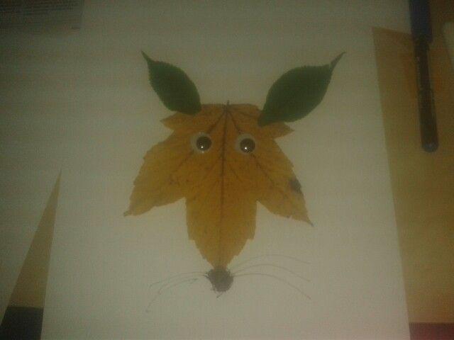 Vlk z listu