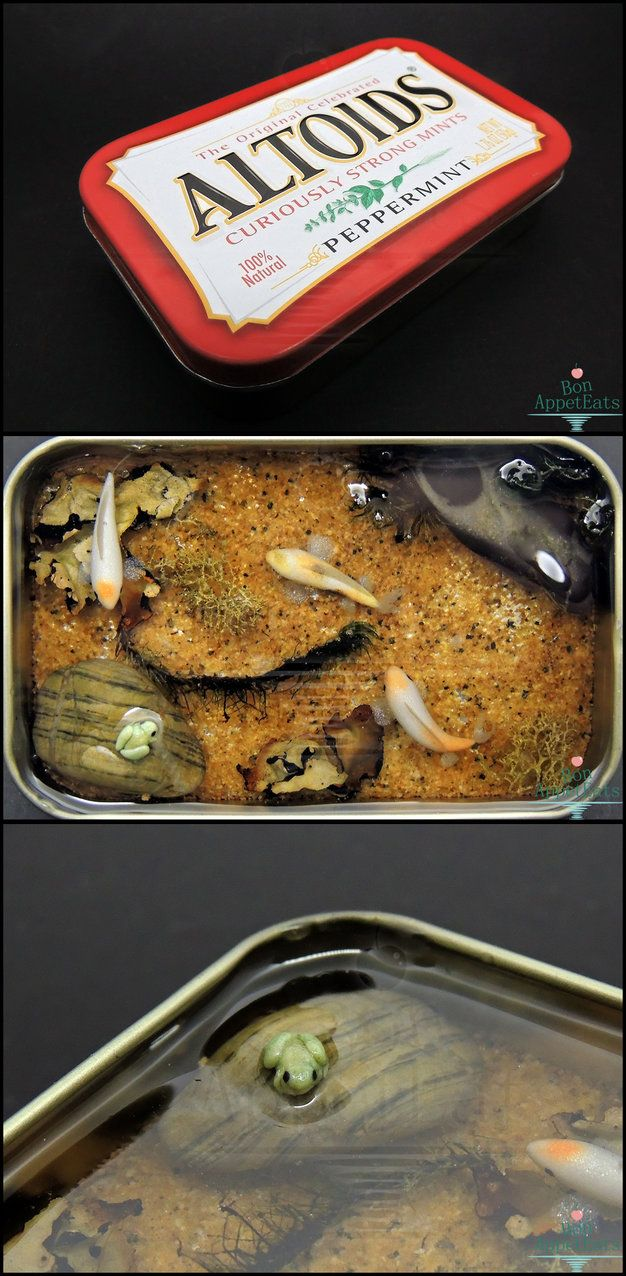 A complete polymer clay and resin pond scape in an Altoid tin. Fantastic. Gift - Large Altoids Tin Koi Pond by Bon-AppetEats