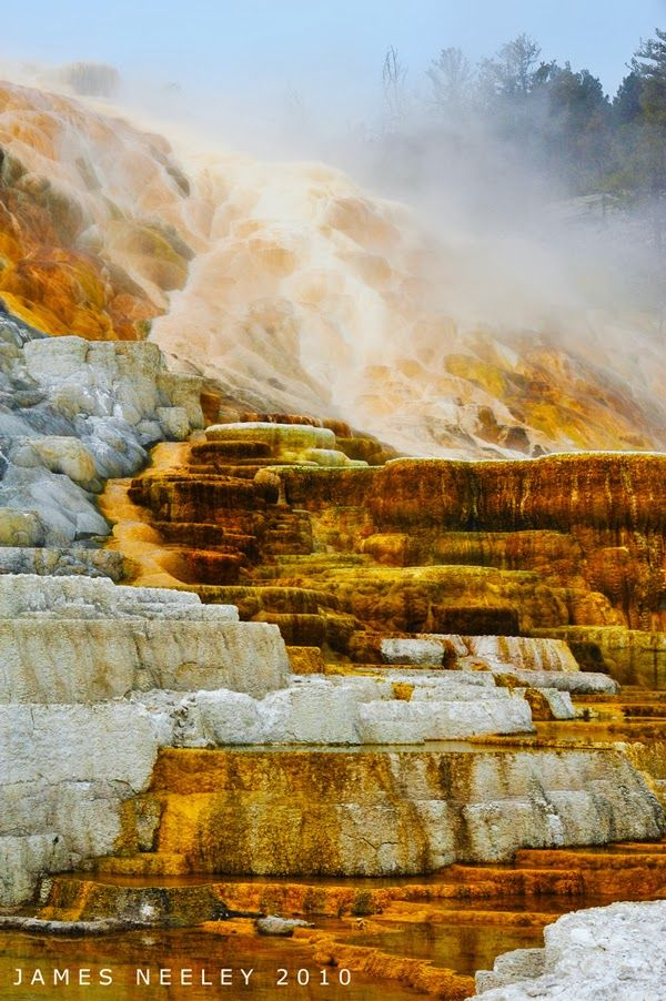 Mammoth Hot Springs in Yellowstone National Park, Wyoming United States